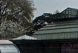 Jardin des Plantes de Paris, vulgarisation de l'Histoire Naturelle